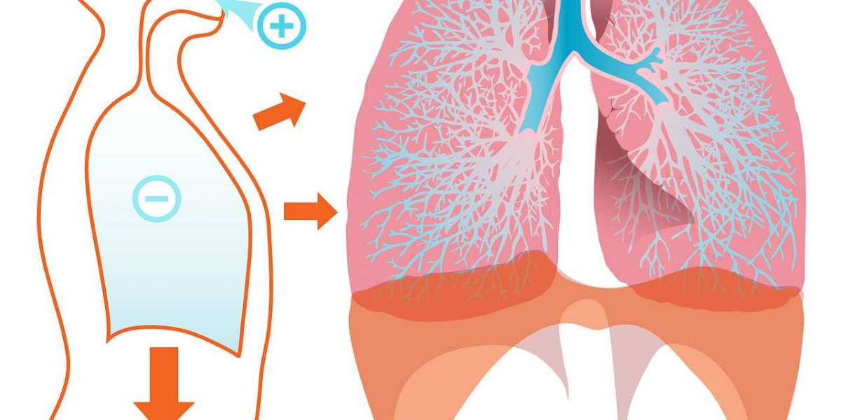 8 Makanan yang Wajib Bagi Perokok Berat Agar Paru-paru Tetap Sehat