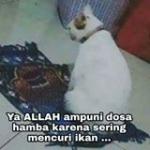 Andy Maulana