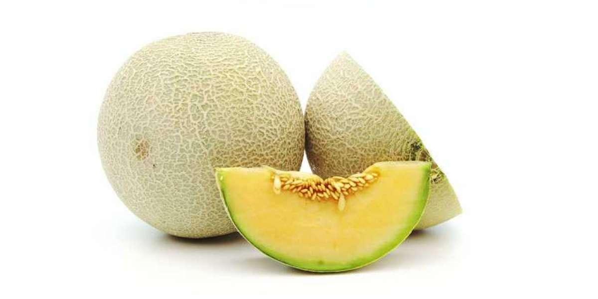 5 Manfaat Buah Melon yang Menyehatkan Tubuh