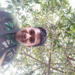 Ahmad Zailani